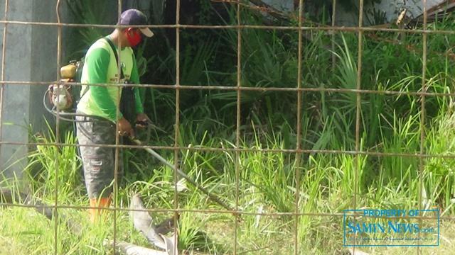 Personel yang bertugas menangani kebersihan Stadion Joyokusumo melakukan pembersihan semak-semak di luar lapangan dalam lingkungan stadion tersebut.