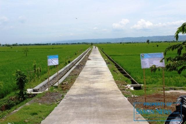 Ilustrasi : sebuah jalan usaha tani yang dibuat untuk memaksimalkan potensi pertanian.